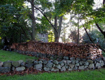 firewood stacked for winter